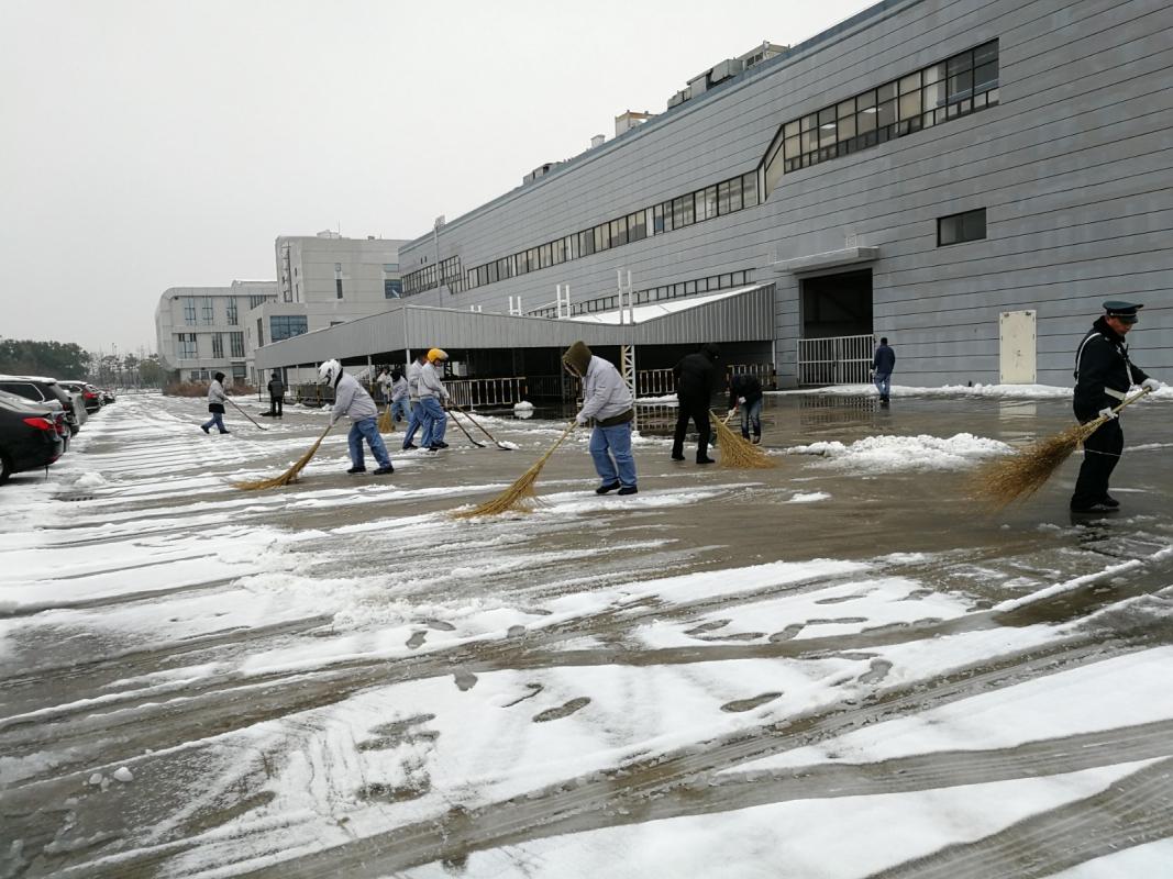 14 为了员工出行安全,管理部组织清扫厂区积雪.jpg